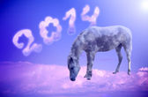 New year 2014, blue horse on a cloud — Stock Photo