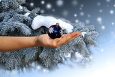 Female hand with a christmas sphere — Stock Photo