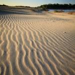 Песчаные дюны — Стоковое фото