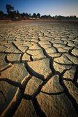 乾燥した土地 — ストック写真