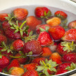 Strawberries in water — Stock Photo #17430295