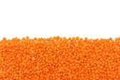 Red Lentils border isolated on white background — Stock Photo
