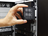System administrator examine hardware failure on data server — Stock Photo
