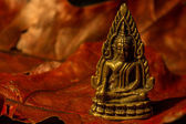 Little Buddha — Stock Photo