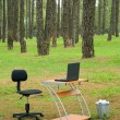 Office desk and laptop in forest - Stock Photo