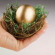 Hand holding nest with golden egg — Stock Photo #18211053