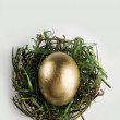 Golden egg in nest on grey — Stock Photo