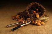 Assortiment van noten in de mand met Notenkraker — Stockfoto