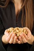 Working for peanuts — Stock Photo