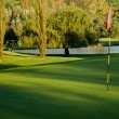 Stock Photo: Golf green, flag and water hazard