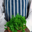 Royalty-Free Stock Photo: Woman chef with parsley