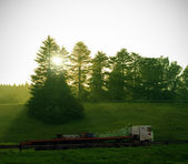 Truck delivery with sun and trees — Stock Photo