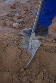 Foot and shovel — Stock Photo