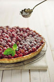 Cake tart — Stock Photo