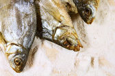 Dried fish and salt. — Stock Photo
