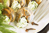 A snail with dill and parsley. — Stock Photo