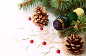 Christmas garland and a bottle of champagne — Stock Photo
