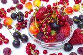 Frutti di bosco assortiti — Foto Stock