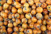 MEDLAR FRUITS — Stock Photo