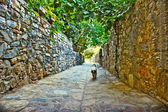 Old Datca — Stock Photo