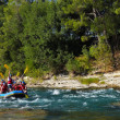 Funny Rafting — Stock Photo