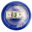 Money With Freezer Burn On A Plate - XXXL — Stock Photo