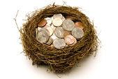 Nest Full of Money For Savings — Stock Photo
