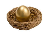 Golden Egg In Nest Isolated On White — Stock Photo