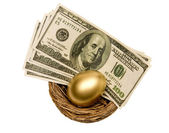 Golden Egg and Money in Nest Isolated — Stock Photo
