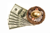 Golden Nest Egg With Lots Of Money Isolated On White — Stock Photo
