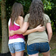 Girlfriends Walking Together In Park — Stock Photo #22861178