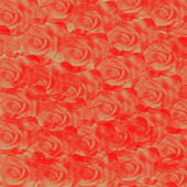 Rose background — Stock Photo
