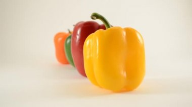 Yellow, Red, Green and Orange Peppers Against White - Line Arrangement - Dolly Right — Stock Video