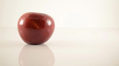 Rome Apple On Acrylic Against White - Dolly Right — Stock Video