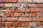 Brick wall background — Foto Stock