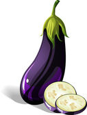 Eggplant — Stock Vector