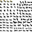 Royalty-Free Stock Vector Image: Silhouettes of horses