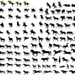Stock Vector: Silhouettes of horses
