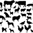 Stock Vector: Pets & farm animals