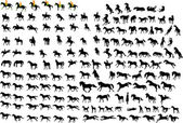 Silhouettes of horses — Stock Vector