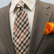 Light grey checkered jacket with brown checkered tie and orange — Stock Photo