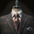 Checkered Jacket with Striped Shirt and Tie (Horizontal) — Stock Photo