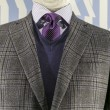 Grey Checkered Jacket with Blue weater and Purple Tie (horizonta — Stock Photo #17436173