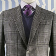 Grey Checkered Jacket with Blue weater and Purple Tie (vertical) — Stock Photo