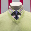 Green Sweater, Striped Shirt and Blue Tie (front view) - Stock Photo