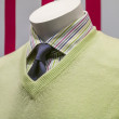Green Sweater, Striped Shirt and Blue Tie (side view) — Stock Photo