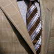 Light grey checkered jacket, blue shirt and tie — Stock Photo