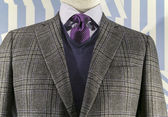 Grey Checkered Jacket with Blue weater and Purple Tie (horizonta — Stock Photo