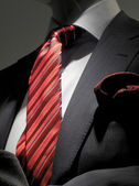 Striped grey jacket with red striped tie and handkerchief (verti — Stock Photo