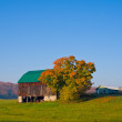 Old Barn in a Field — Stock Photo #17440421